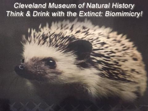 Cleveland Museum of Natural History's Think & Drink with the Extinct: Biomimicry!